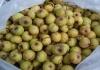 Jabukovo sirće / Jabučni ocat